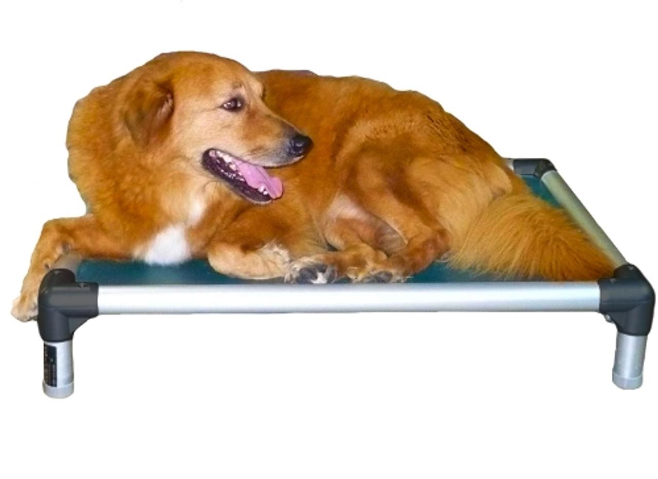 Aluminum Dog Bed By Kuranda Dog Beds