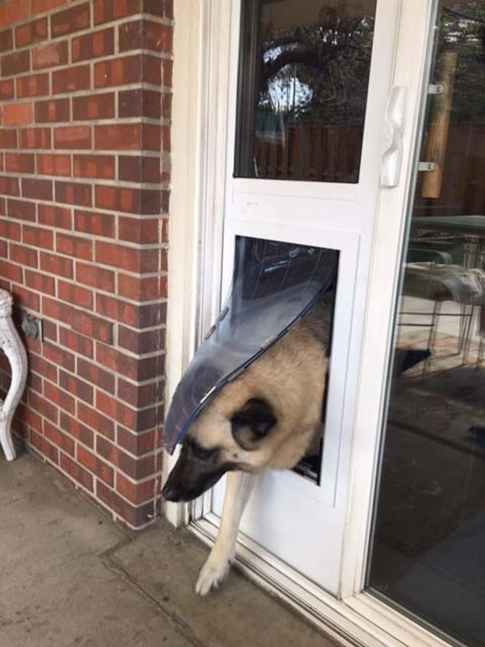 maxseal insulated patio pet door insert
