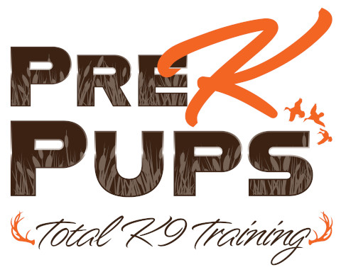pre-k-pups1..jpg