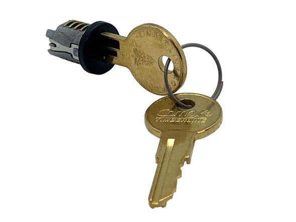 Compx Timberline C300LP-100TA-19 Black Key Plug, Keyed Alike 100TA