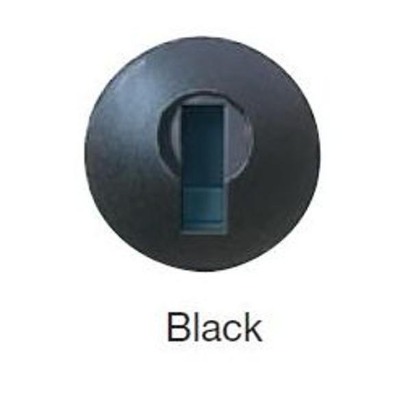 Compx Timberline C300LP-104TA-19 Key Plug, Black Finish