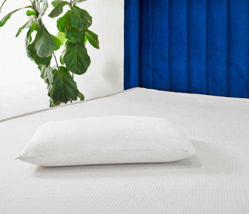 World's First Carbon Neutral 100% Certified Organic Latex Pillow - Classic