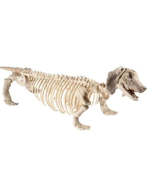 Natural Daschund Dog Skeleton Prop, Halloween Fancy Dress Accessories