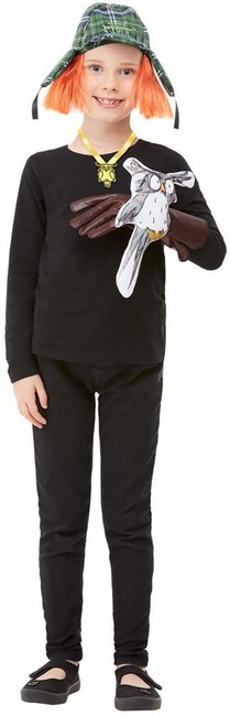 David Walliams Awful Auntie Kit, Fancy Dress Accessory