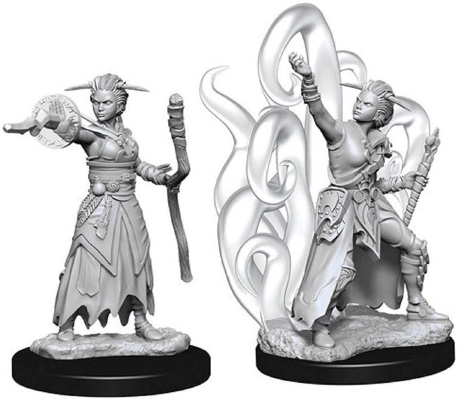 Female Human Warlock: D&D Nolzur's Marvelous Unpainted Miniatures (W10)