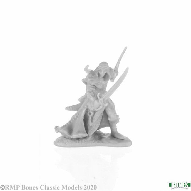 Aravir, Elf Ranger