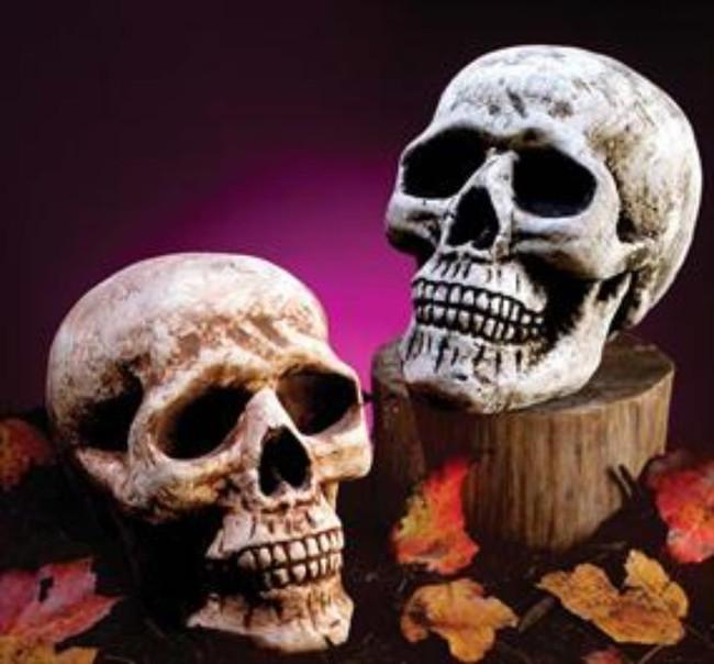 Skull Head (White)
