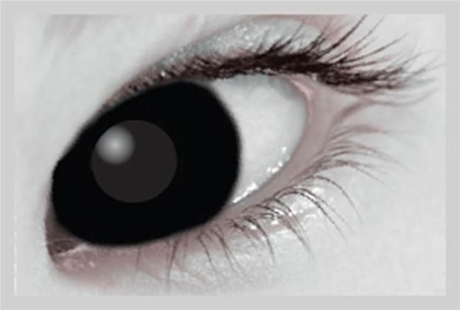 Xtreme Eyez. 1 Day Lens. Black Out