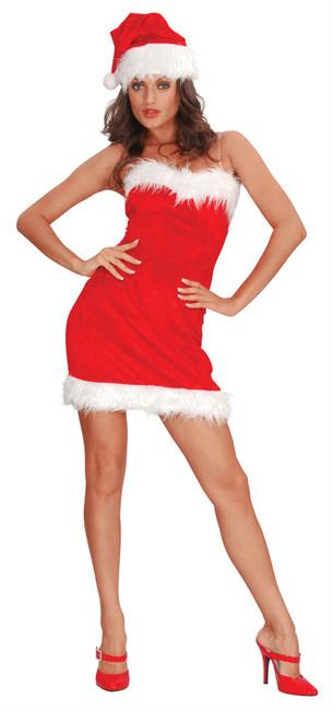 Sexy Santa Lady.
