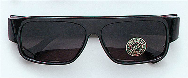 Pop/Movie Star Style Sunglasses