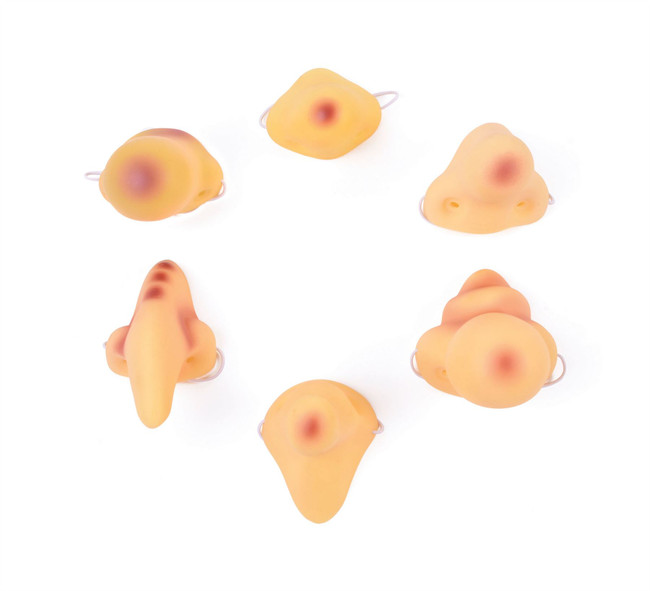 Noses Vinyl