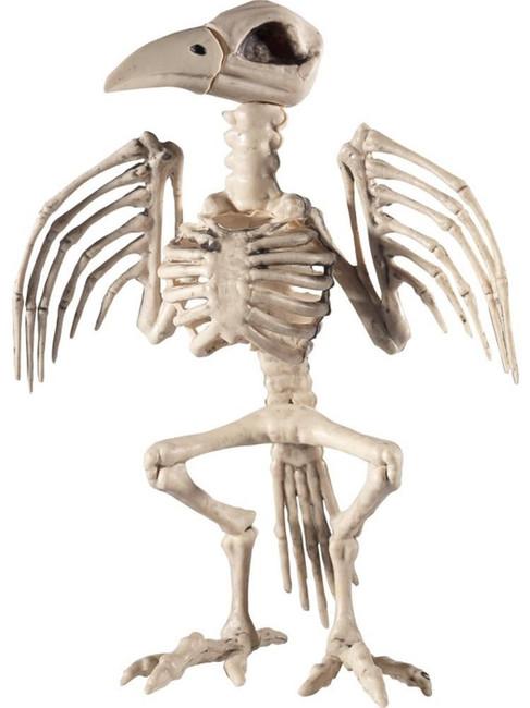 Natural Raven Skeleton Prop, Halloween Fancy Dress Accessories