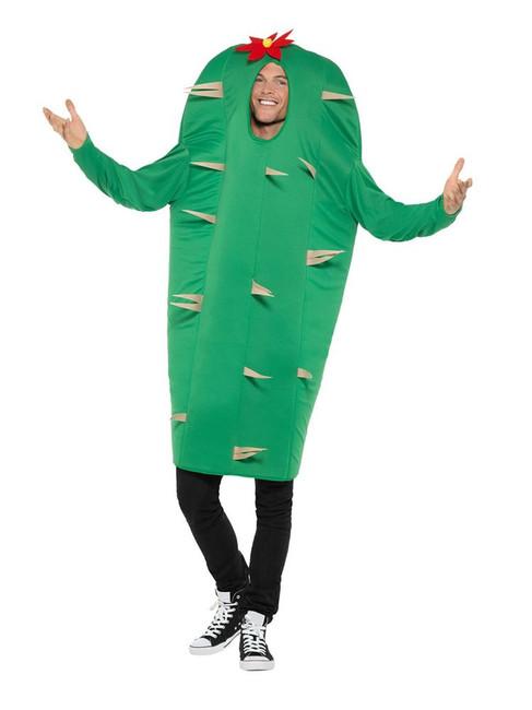 Cactus Costume, Hawaiian Luau Fancy Dress, One Size