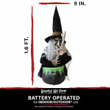 Haunted Hill Farm Haunted Hill Farm 1.6-ft Animated Witch, Indoor/Covered Outdoor Halloween Decoration, Red/Green LED Eyes, Battery-Operated, Evanora, HHDWTC-2LSA