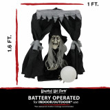 Haunted Hill Farm Haunted Hill Farm 1.6-ft Hanging Witch in Box, Indoor/Covered Outdoor Halloween Decoration, LED Red Eyes, Poseable, Battery-Operated, Orphelia, HHFTWTC-1HLSA