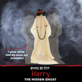 Haunted Hill Farm Haunted Hill Farm 6.5-ft Animatronic Ghost, Indoor/Outdoor Halloween Decoration, White LED Face, Poseable, Battery-Operated, Harry, HHGHST-5FLS