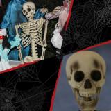 Haunted Hill Farm Haunted Hill Farm 5-ft Skeleton, Indoor/Covered Outdoor Halloween Decoration, Poseable, Igor, HHSKEL-8HA