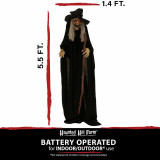 Haunted Hill Farm Haunted Hill Farm 5.5-ft Standing Witch, Indoor/Covered Outdoor Halloween Decoration, LED Red Eyes, Poseable, Battery-Operated, Harper, HHWITCH-22FLSA