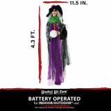 Haunted Hill Farm Haunted Hill Farm 4.3-ft Witch, Indoor/Covered Outdoor Halloween Decoration, Multi LED Eyes, Poseable, Battery-Operated, Eve, HHWITCH-32HLS