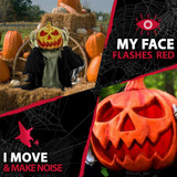 Haunted Hill Farm Pop-Up Animatronic Pumpkin Head with Flashing Red Face, 25 inches