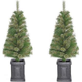 Fraser Hill Farm Set of 2, Porch Accent Tree in Black Pot, Various Lighting Options