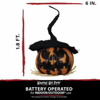 Haunted Hill Farm Haunted Hill Farm 1.8-ft Shaking Pumpkin with Witch Hat, Indoor/Covered Outdoor Halloween Decoration, Battery-Operated, HHDPUMP-2SA