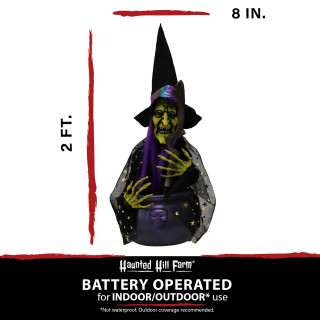 Haunted Hill Farm Haunted Hill Farm 1.4-ft Animated Witch, Indoor/Covered Outdoor Halloween Decoration, Red/Green LED, Battery-Operated, Cat, HHDWTC-1LSA