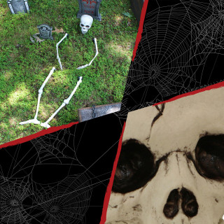 Haunted Hill Farm Haunted Hill Farm 2.8-ft Ground-Breaking Skeleton, Indoor/Outdoor Halloween Decoration, HHGBSKEL-1GB