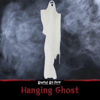 Haunted Hill Farm Haunted Hill Farm 7-ft Hanging Ghost, Indoor/Covered Outdoor Halloween Decoration, Poseable, HHGHST-11H