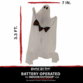 Haunted Hill Farm Haunted Hill Farm 3.3-ft White Ghost with Stake/BOO Scroll, Indoor/Covered Outdoor Halloween Decoration, LED Multi-Color, Battery-Operated, HHGHST-2STK