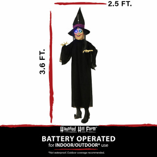 Haunted Hill Farm Haunted Hill Farm 3.6-ft Animatronic Floating Witch, Indoor/Outdoor Halloween Decoration, Blue LED Eyes, Poseable, Battery-Operated, HHMNWTC-4HLSA