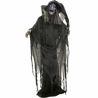 Haunted Hill Farm Haunted Hill Farm 5.7-ft Standing Witch, Indoor/Covered Outdoor Halloween Decoration, LED White Eyes, Poseable, Battery-Operated, Phoenix, HHWITCH-20FLSA