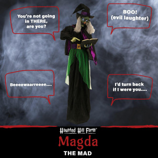 Haunted Hill Farm Haunted Hill Farm 6-ft Standing Witch, Indoor/Covered Outdoor Halloween Decoration, LED White Eyes, Poseable, Battery-Operated, Magda the Mad, HHWITCH-23FLSA