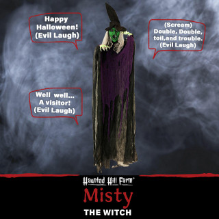 Haunted Hill Farm Haunted Hill Farm 5.8-Ft Hanging Witch, Indoor/Covered Outdoor Halloween Decoration, LED Red Eyes, Poseable, Battery-Operated, Mary, HHWITCH-25HLS