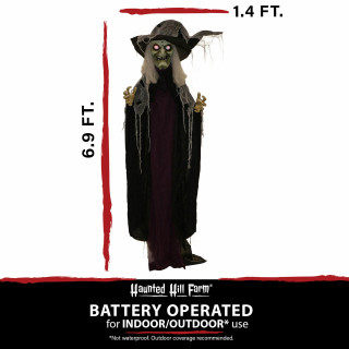 Haunted Hill Farm Haunted Hill Farm 6.9-ft Standing Witch, Indoor/Covered Outdoor Halloween Decoration, LED Red Eyes, Poseable, Battery-Operated, Spinster, HHWITCH-27FLSA