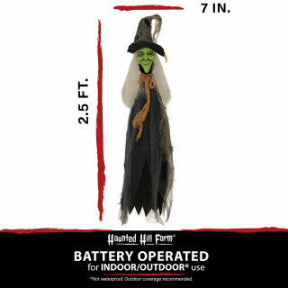 Haunted Hill Farm Haunted Hill Farm 2.5-ft Staked Witch, Indoor/Covered Outdoor Halloween Decoration, LED Red Eyes, Battery-Operated, HHWTC-2STLS