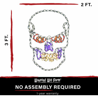 Haunted Hill Farm Haunted Hill Farm Halloween Indoor/Outdoor Scary Skull LED Light 24 in x 36 in, FFHELED036-SKL0-WHT