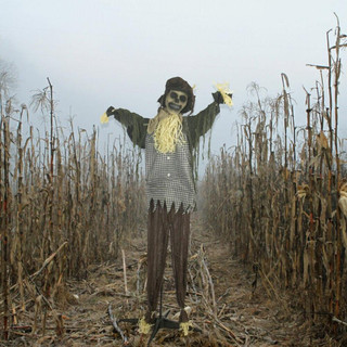 Haunted Hill Farm Life-Size Poseable Animatronic Laughing Scarecrow Poe