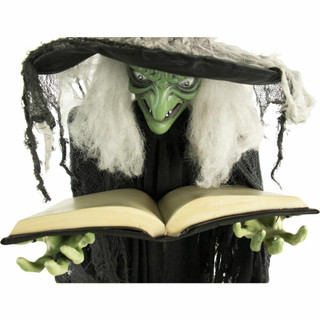 Haunted Hill Farm Life-Size Animatronic Witch with Green Light-up Eyes, Talking Sybil