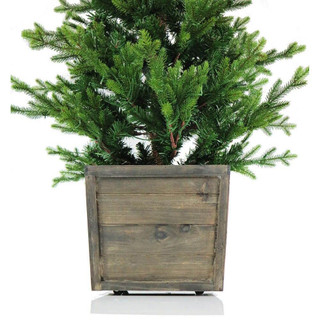 Fraser Hill Farm Royal Pine Artificial Potted Tree with Battery-Operated LED Lights, 4 Feet Tall