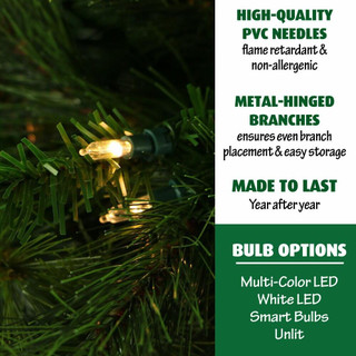 Fraser Hill Farm Canyon Pine Christmas Tree, Various Sizes and Lighting Options