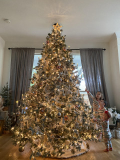 Fraser Hill Farm Mountain Pine Flocked Christmas Tree, Various Sizes 7.5 ft to 9 ft and Lighting Options