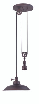 1 Light Pulley Pendant w/Metal Shade (20|P400ABZ)