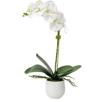 Uttermost Cami White Orchid (85 60178)
