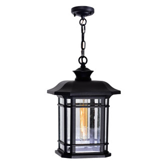 Blackburn 1 Light Outdoor Black Pendant (3691|0411P91101)