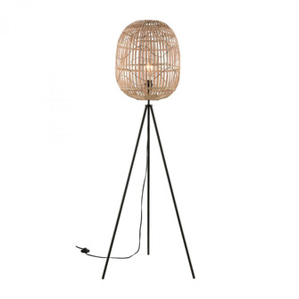 Cold Spring Floor Lamp (6919|77197)