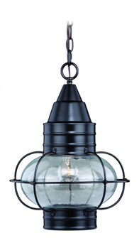Chatham 13-in Outdoor Pendant Oil Burnished Bronze (51 T0284)