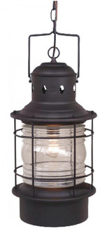 Hyannis 10-in Outdoor Pendant Textured Black (51 OD37006TB)