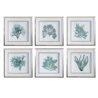 Uttermost Coral Reef Framed Prints, Set/6 (85|33704)