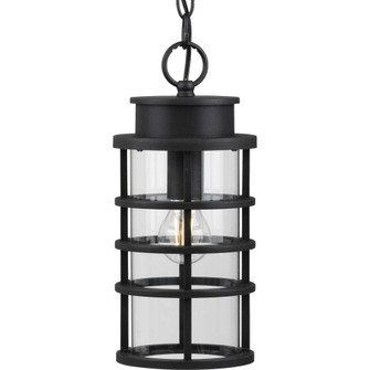 Port Royal Collection One-Light Hanging Lantern with DURASHIELD (149 P550061031)